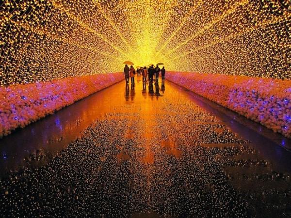 Không gian đẹp, lung linh của lễ hội có sức quyến rũ đặc biệt đối với các bạn trẻ. Chương trình biểu diễn ánh sáng diễn từ lúc 18 – 22h ra hằng ngày.