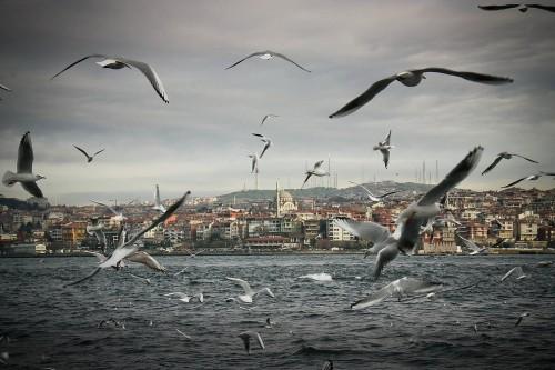 de-trai-tim-lai-Istanbul-13