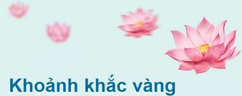 vietnam-airlines-khoang-khac-vang