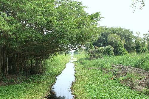 du-lich-ca-mau-sanvemaybay-vn-3