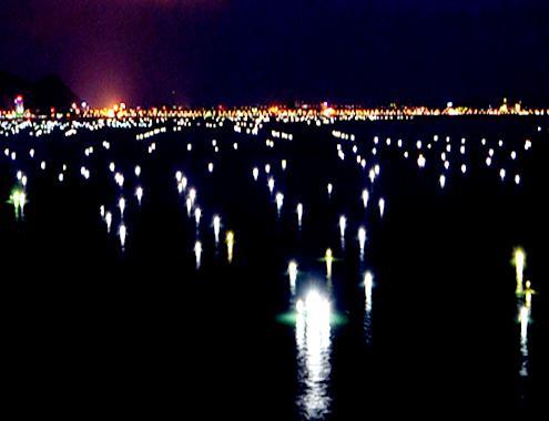 Du lịch biển Quy Nhơn về khuya