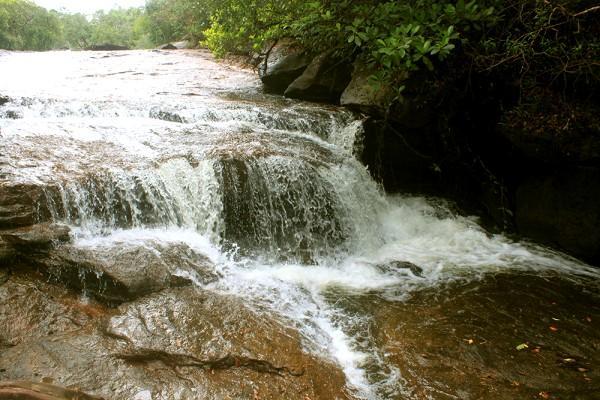 Suối Đá Bàn bắt nguồn từ núi Hàm Ninh, là ngọn núi dài nhất và cao nhất trong 99 ngọn núi ở Phú Quốc