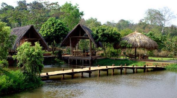 Buôn AKô Đhông hay Buôn Cô Thôn là một buôn làng người Ê Đê nằm ở cuối đường Trần Nhật Duật - thành phố Buôn Ma Thuột.