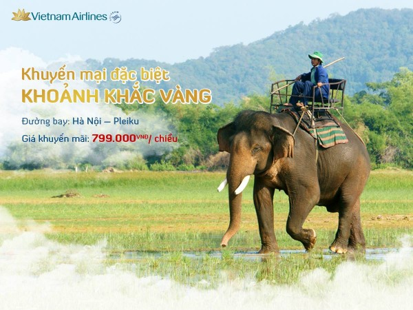 San ve may bay gia re Vietnam Airlines chỉ 799k