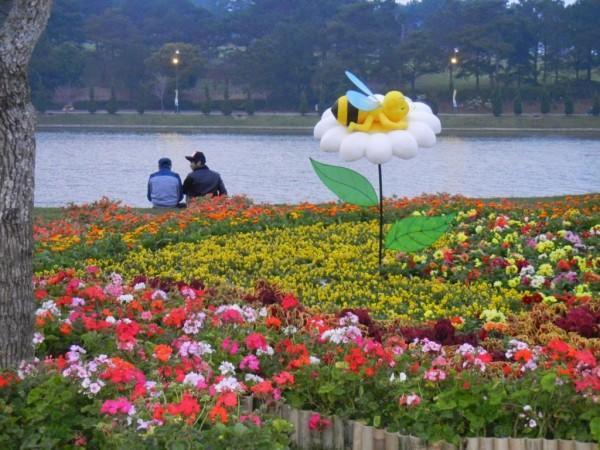 Vé máy bay đi Đà Lạt giá rẻ tham dự Festival hoa