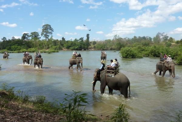 Cưỡi voi trên sông Serepok
