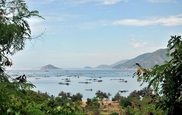 Cảnh thanh bình biển Vũng Rô