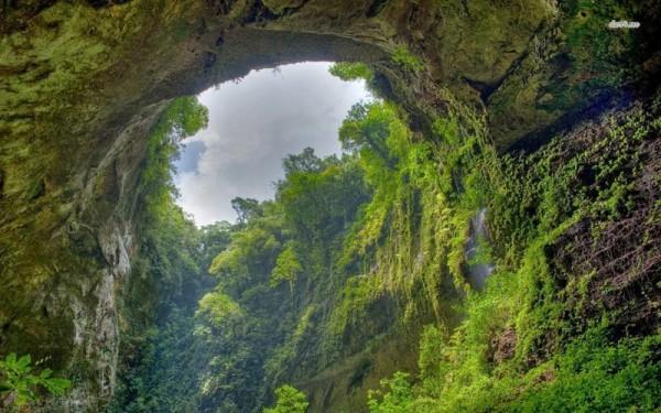 Một thế mới tồn tại trong lòng hang động Sơn Đoòng