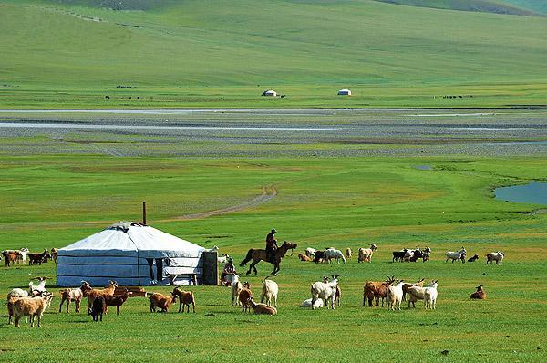 YurtCamp Orkhon Ovorkhangai Mongolia
