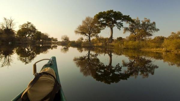 Đồng bằng Okavango - ốc đảo diệu kỳ của châu Phi