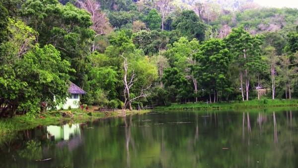 Khu bảo tồn cuộc sống hoang dã Khao Phra Thaeo