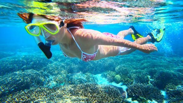 Kinh nghiệm lặn biển ngắm san hô
