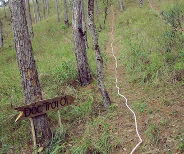 """Con dốc Trời Ơi - điểm đến thú vị của riêng Đà Lạt, nó sẽ khiến cho những ai khi leo lên đến đĩnh con dốc sẽ phải thốt lên """" Trời ơi"""""""