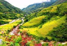 Rủ nhau đặt vé máy bay đi Hà Nội khám phá vẻ đẹp Sapa