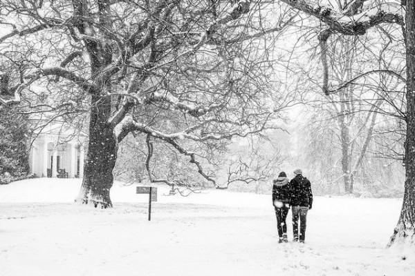 Đông này bạn muốn ngắm tuyết rơi?