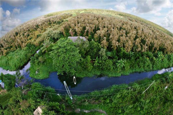 Vườn quốc gia U Minh Hạ
