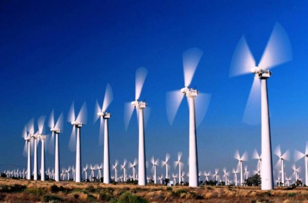 Cánh đồng điện gió Bạc Liêu