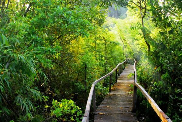 Trải nghiệm vườn Quốc gia Nam Cát Tiên