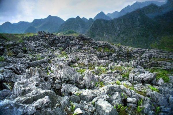 Vẻ đẹp hoang sơ của Cao nguyên đá Đồng Văn.