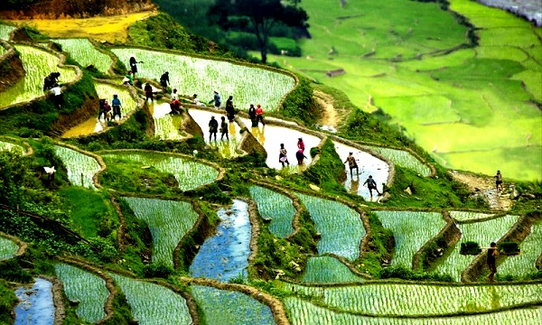 Top 5 địa điểm chụp hình đẹp nhất Nghệ An