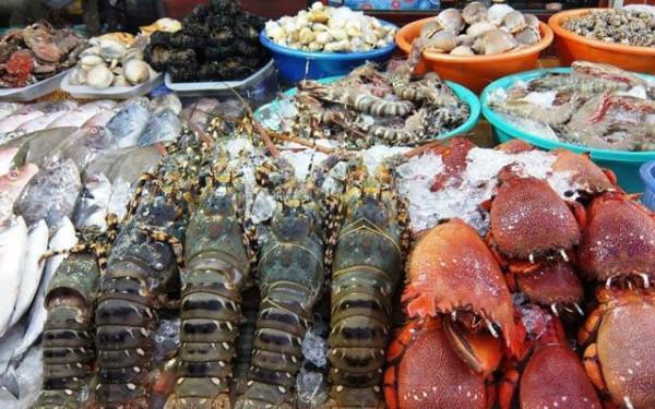 Thưởng thức hải sản tươi sống