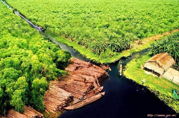 Du Lịch Cà Mau Khám Phá Thiên Nhiên Sông Nước Xinh Đẹp