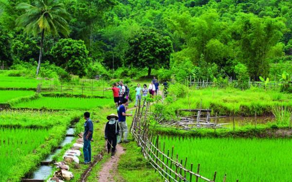 Mai Châu còn hấp dẫn du khách bởi vẻ đẹp thuần khiết và thân thiện