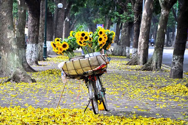 Chạm ngõ vào thu Hà Nội với vé máy bay giá rẻ