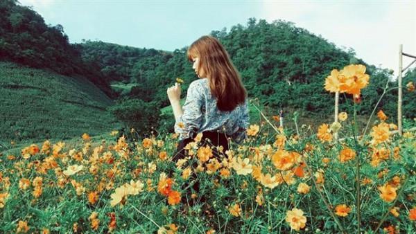 Mộc Châu Happy Land 11
