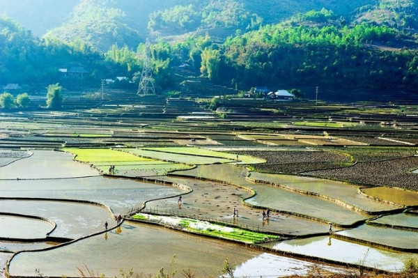 Than Uyên (Lai Châu) 1