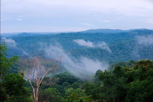 Vườn quốc gia Bù Gia Mập