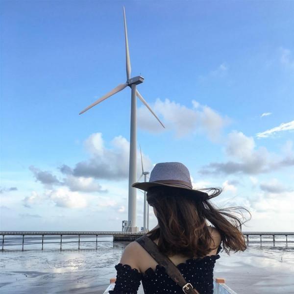 cánh đồng gió bạc liêu7