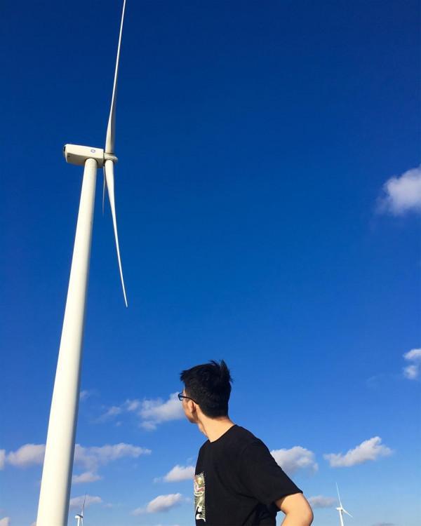 cánh đồng gió bạc liêu8