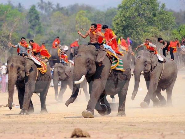Lễ hội đua voi tại Buôn Mê Thuột