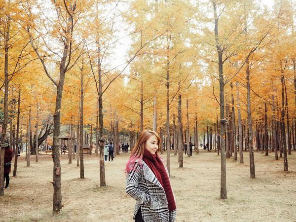 mùa thu mang tên Hàn Quốc