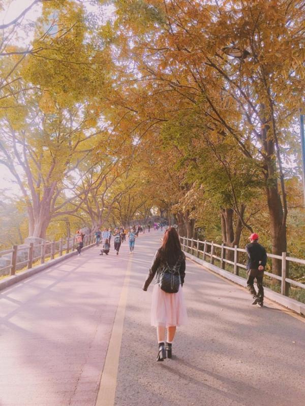 mùa thu mang tên Hàn Quốc1