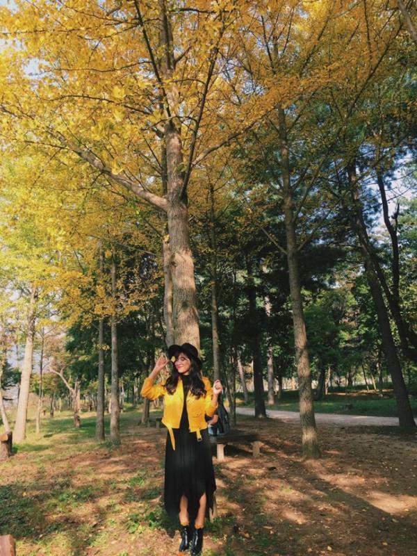 mùa thu mang tên Hàn Quốc7