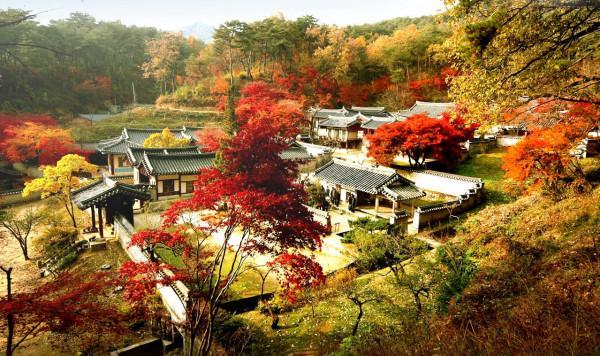 mùa thu mang tên Hàn Quốc8