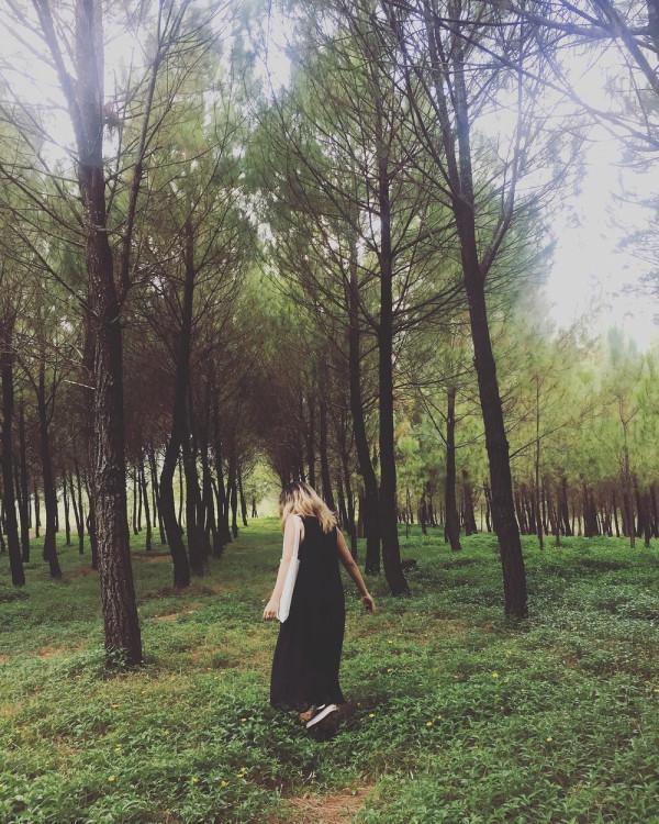 Đồi Vọng Cảnh - Ôm trọn hoàng hôn xứ Huế tuyệt đẹp