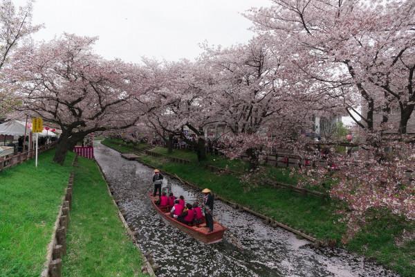 Dòng sông ở Kawagoe2
