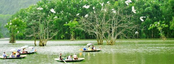 Vườn Chim Thung Nham 1
