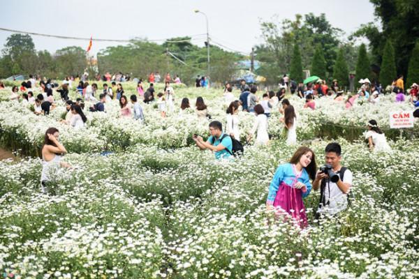Làng hoa Nhật Tân.1