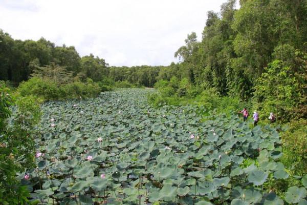 Khu bảo tồn thiên nhiên Lung Ngọc Hoàng.1