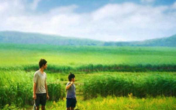 Phú Yên  vẻ đẹp trời phú giữa miền Trung đầy nắng gió2