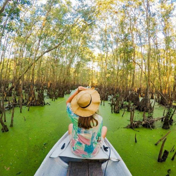 rừng tràm Trà Sư1