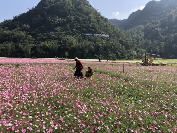 Lang thang mùa vàng tại thung lũng Bắc Sơn Việt2