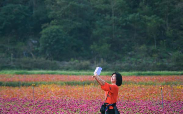 Lang thang mùa vàng tại thung lũng Bắc Sơn Việt4