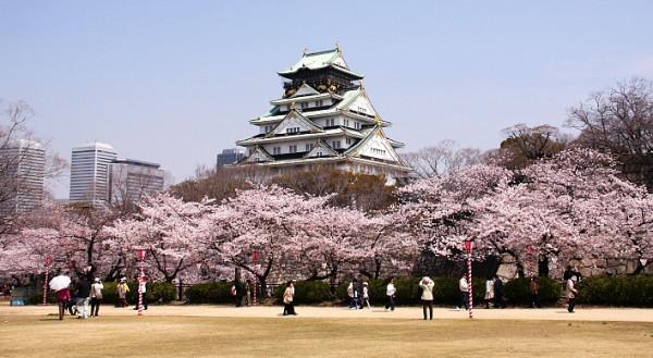 Thành Osaka1