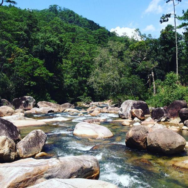 Vườn quốc gia Chư Yang Sin1