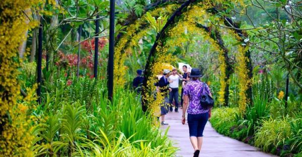 Vườn thực vật Singapore (Botanic Garden)